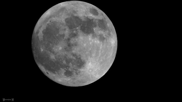 Full Moon - 9131