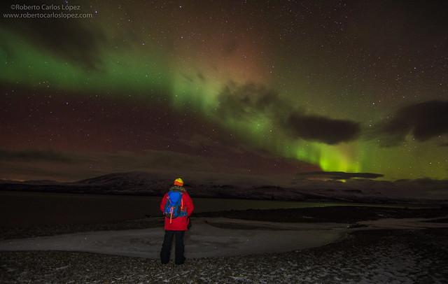 Sele viendo auroras boreales en Suecia