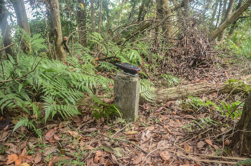 南庄事業處造林界石 1
