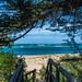 Inverloch - path to the beach