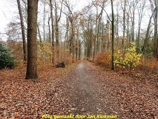 2020-11-28 Het Gooi & Eemland  30 Km (73)