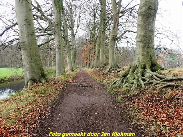 2020-11-28 Het Gooi & Eemland  30 Km (56)