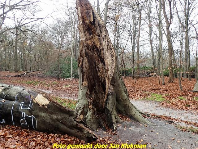 2020-11-28 Het Gooi & Eemland  30 Km (20)