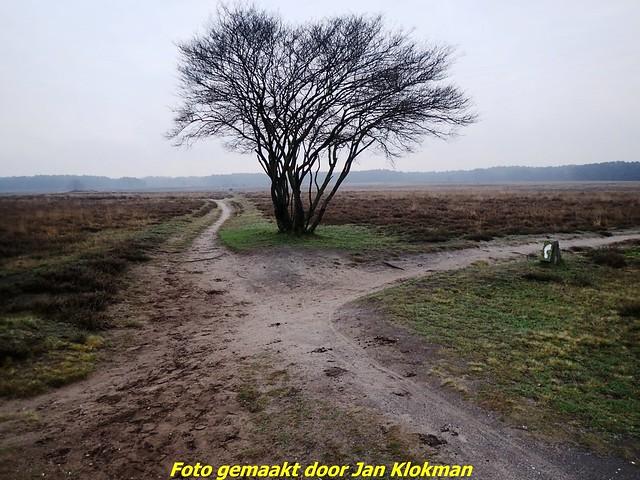 2020-11-28 Het Gooi & Eemland  30 Km (3)