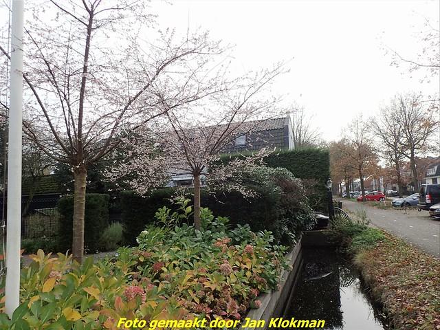 2020-11-28 Het Gooi & Eemland  30 Km (87)