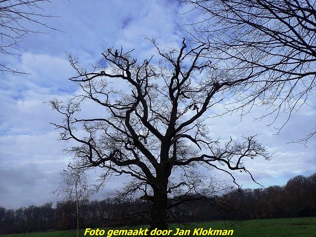 2020-11-28 Het Gooi & Eemland  30 Km (82)