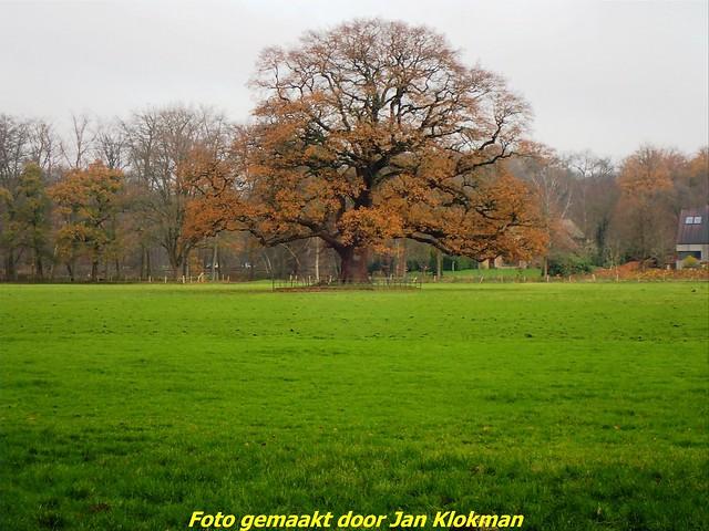 2020-11-28 Het Gooi & Eemland  30 Km (78)