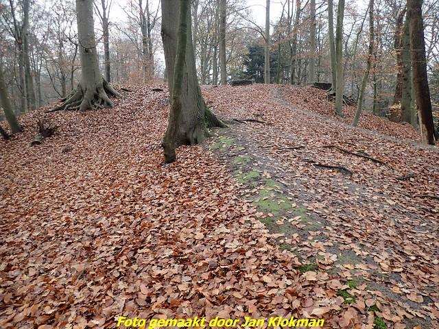 2020-11-28 Het Gooi & Eemland  30 Km (27)