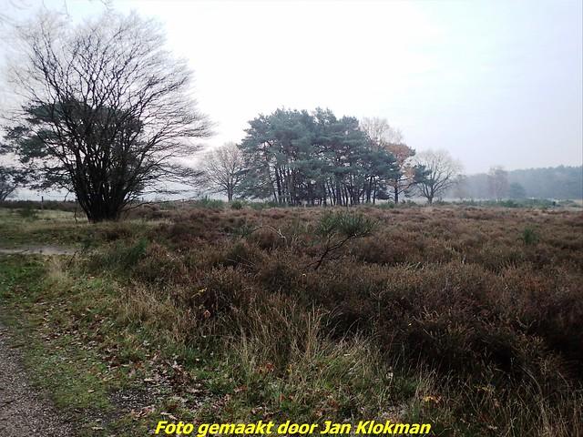 2020-11-28 Het Gooi & Eemland  30 Km (2)