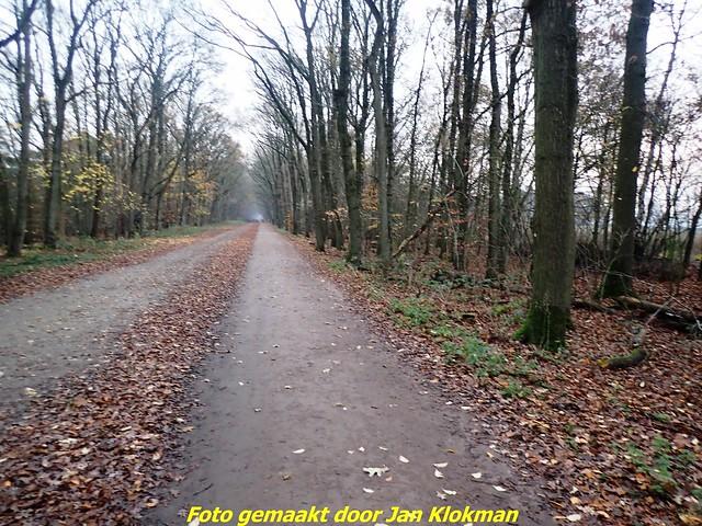 2020-11-28 Het Gooi & Eemland  30 Km (1)