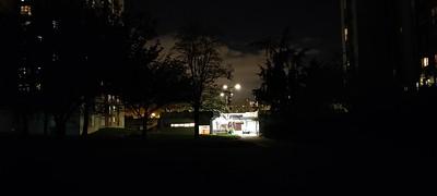 OnePlus 8T photo de nuit