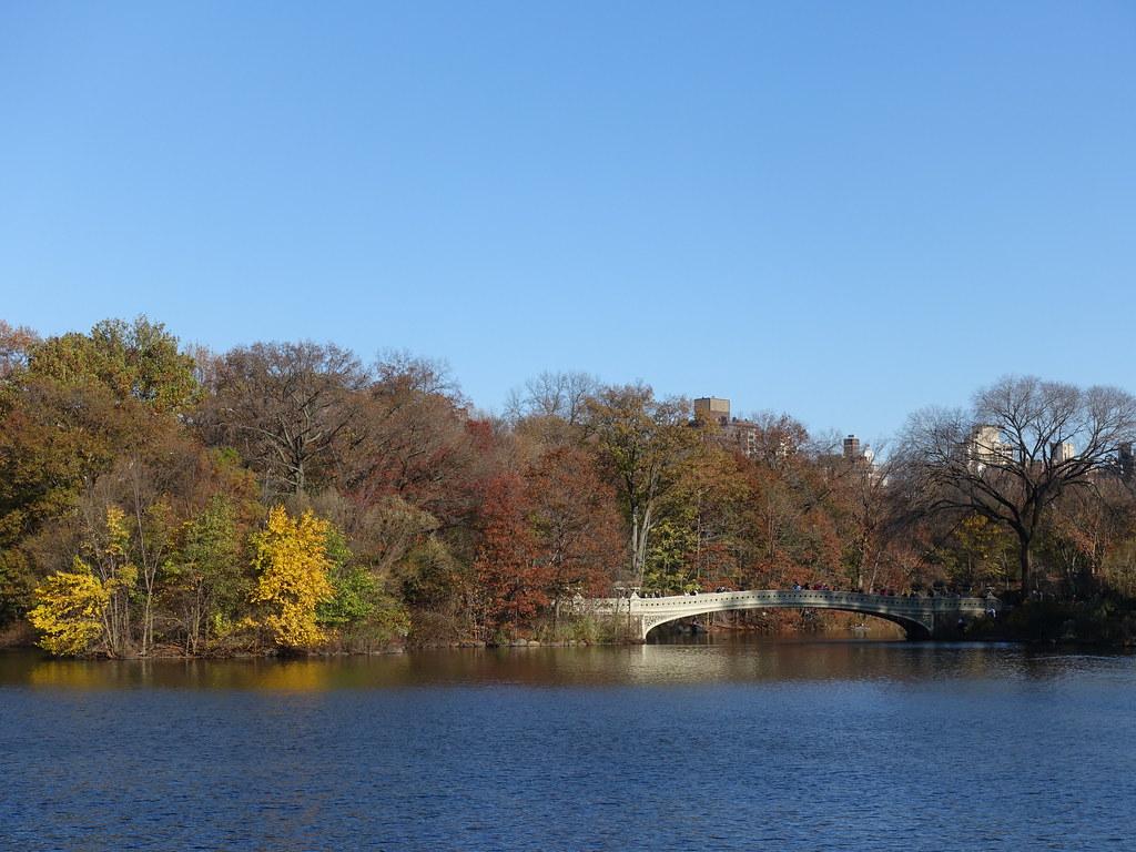 202011040 New York City Central Park