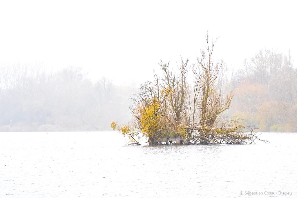 Ambiance hivernale sur Amaury 50664788781_a3ca4d27e7_b
