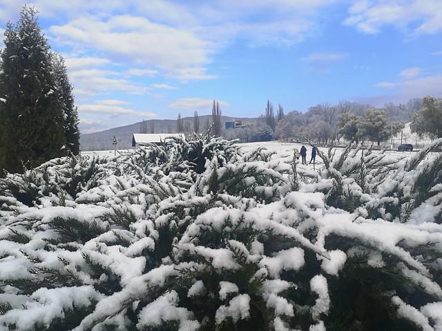 First snowfall 2020