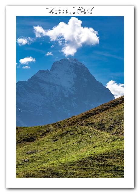 Le Roi Eiger / The King Eiger