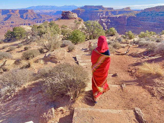 Traveller in Saree