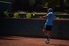 Copa España tenis adulto
