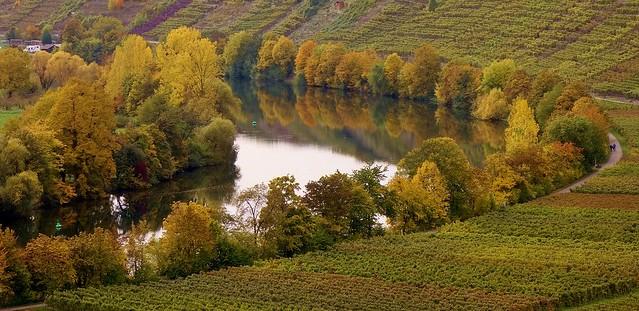 Germany, Neckarschleife bei Mundelsheim . 76994/13208