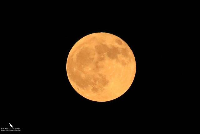 Full Moon Lunar Eclipse - November Beaver Full Moon