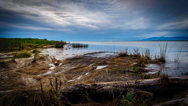 Terra Nova Park (Explored)