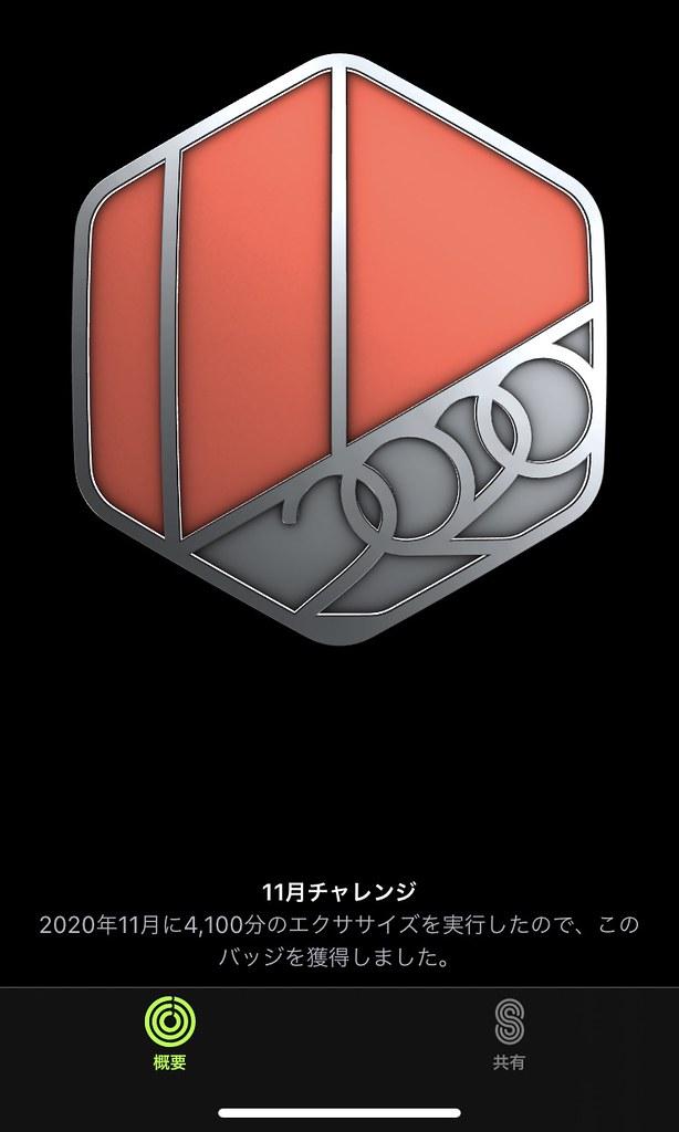 20201201045936