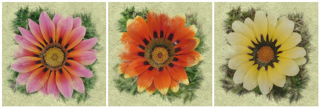 set of 3 fabric flowers