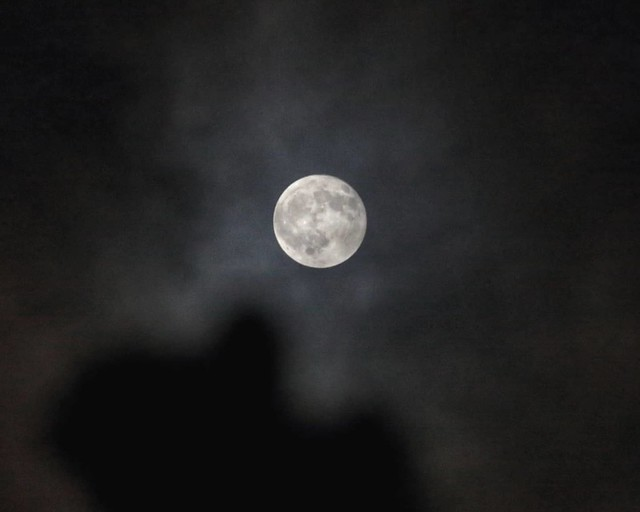 Full Moon (Beaver Moon) and Lunar Eclipse