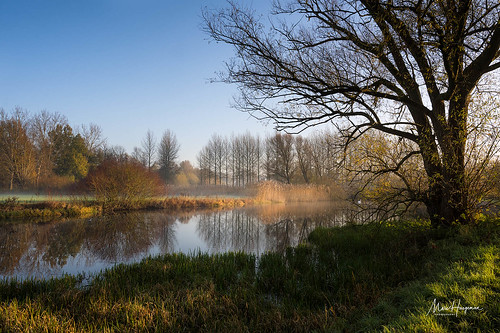 A fine morning by the pond | by Marc Haegeman Photography