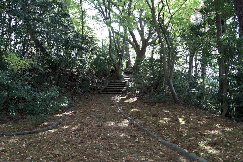 金沢山野草園