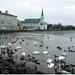 * Reykjavik