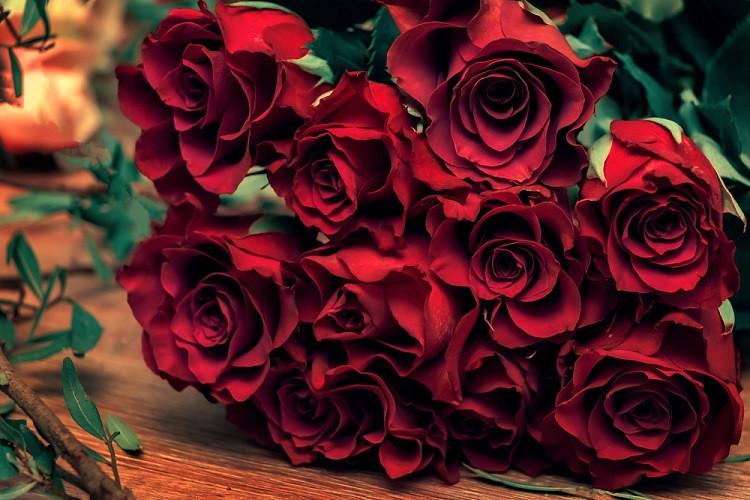 4eaaf429-hoa-hồng-tươi-tặng-bạn-gái
