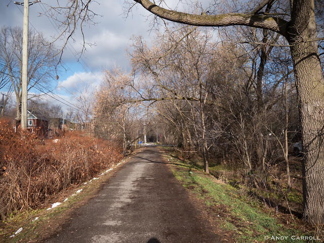 Bike path, autumn