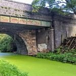 All along the green canal at Preston