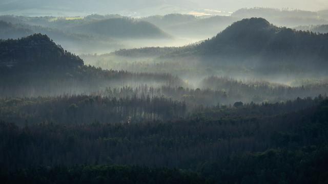 Morning Mist - Morgenschleier