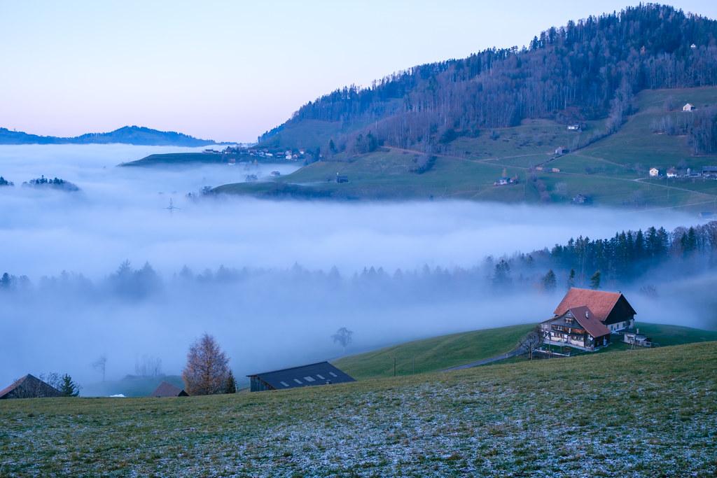 CH ZH Zürcher Oberland: Fälmis - Alp Scheidegg - Fälmis