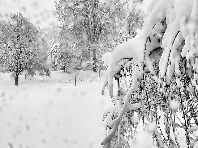 It's so pretty. #snow