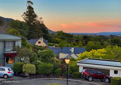 myview sunrise nelson newzealand