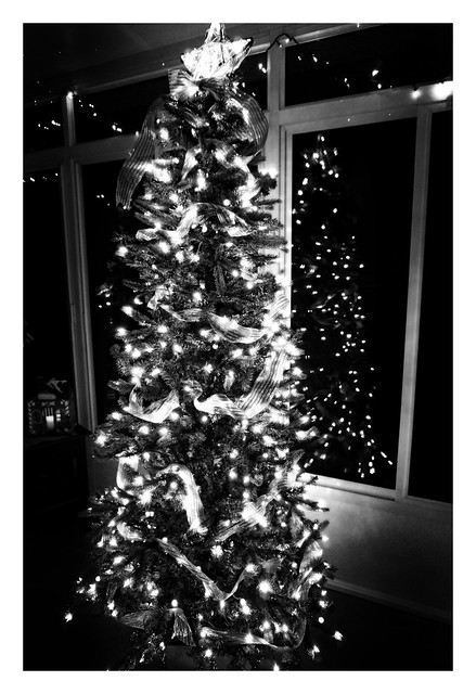 It's Beginning To Look A Lot Like Christmas....