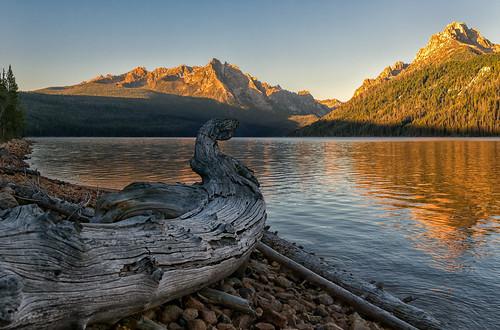 dawn sunrise daybreak morning reflections grandmogul mtheyburn sawtoothmountains littleredfishlake driftlog stanley idaho