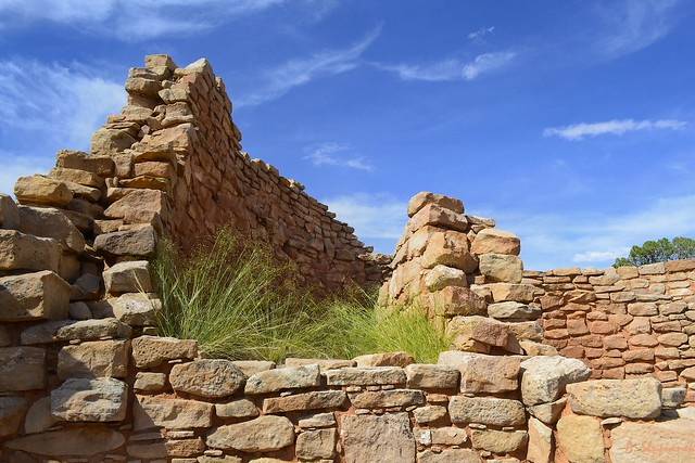 Horseshoe Ruins - Hovenweep National Monument