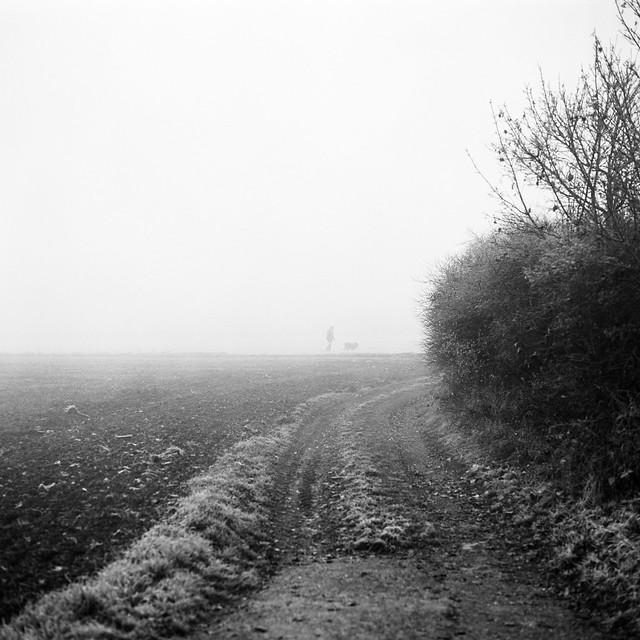 Early morning walk. Amberg (field) street.
