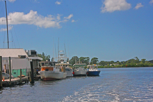 A Group of Fishing Boats near a Resturaunt, Tarpon Springs, Florida