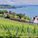 DB Regio_628 XXX-X_Birnau-Maurach 29.06.2020 [RB Friedrichshafen Stadt - Überlingen-Therme]