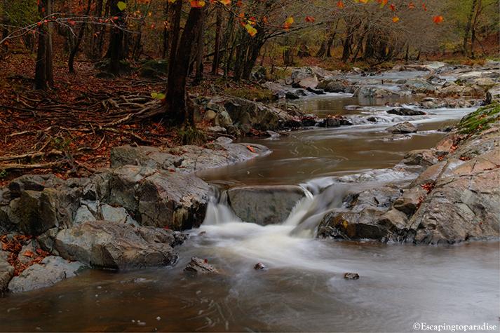 Eno River+1_2292_TCW