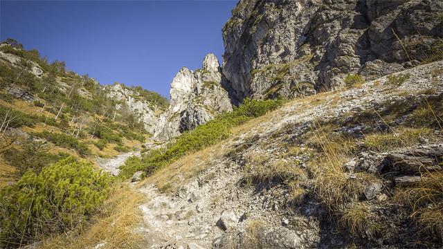 _DSC30620 Hiking to Mt. Schneiderberg / Upper-Austria
