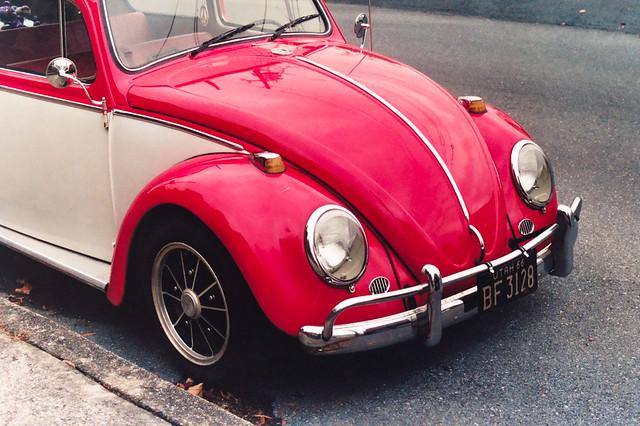 Shiny Bug