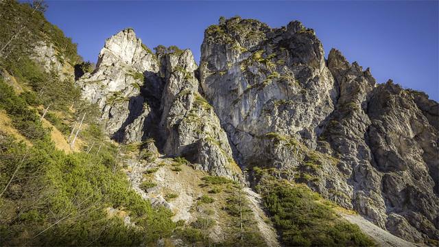 _DSC30622 Hiking to Mt. Schneiderberg / Upper-Austria