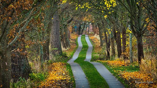 Insel Rügen - ein Weg durch den Herbst (Explore)