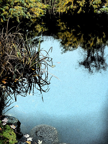 The duck pond on Granville Island in Vancouver's November; run through Photoshop's Sumi-e filter