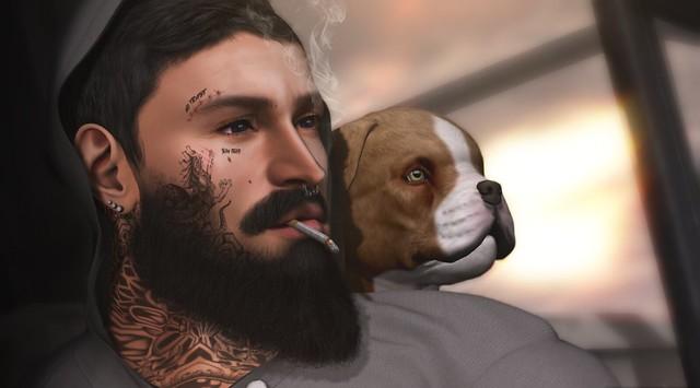 love me like my dog..